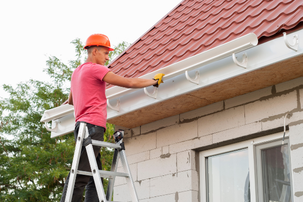 gutter cleaning Maple Grove MN
